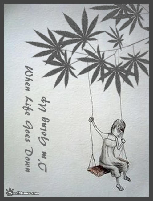 Art Quotes About Life Delectable Life & Weed Art Marijuana Quote  Weed Memes