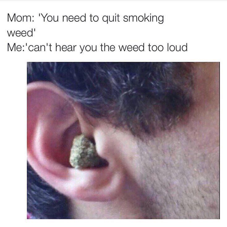 Can't Hear Cuz Weed Is Too Loud Marijuana Memes