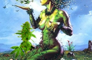 Mother Nature Is My Pharmacist Marijuana Art Memes