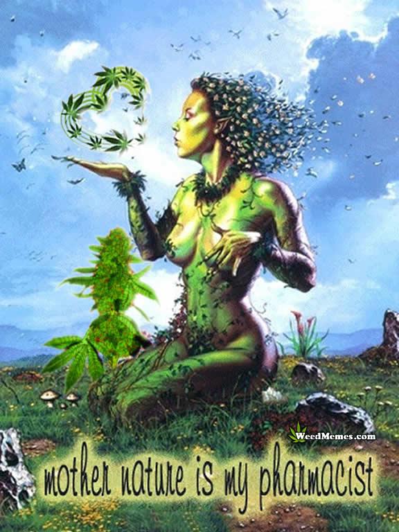 Mother Nature Is My Pharmacist Marijuana Art Memes