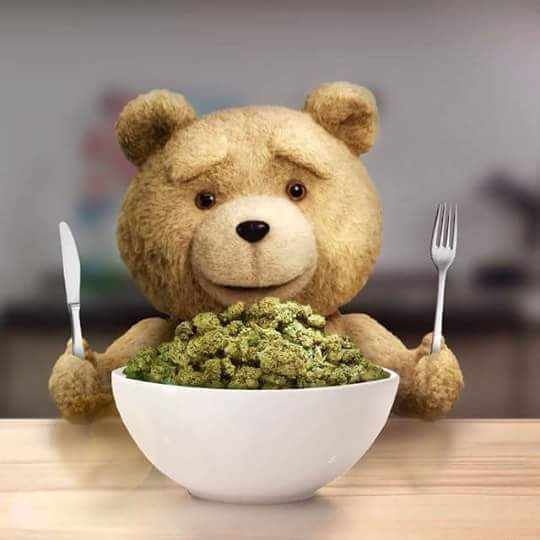 ted weed cereal breakfast meme ted weed cereal breakfast marijuana memes