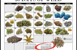 The Perfect Month Of Weed & Dabs Calendar Marijuana Memes
