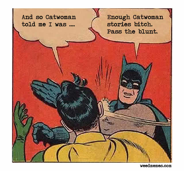 batman robin meme
