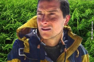 Bear Grylls Forgot Paper Make Bong Out Of Urine Weed Memes