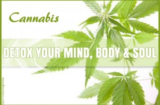 Cannabis Detox Mind, Body & Soul Weed Art