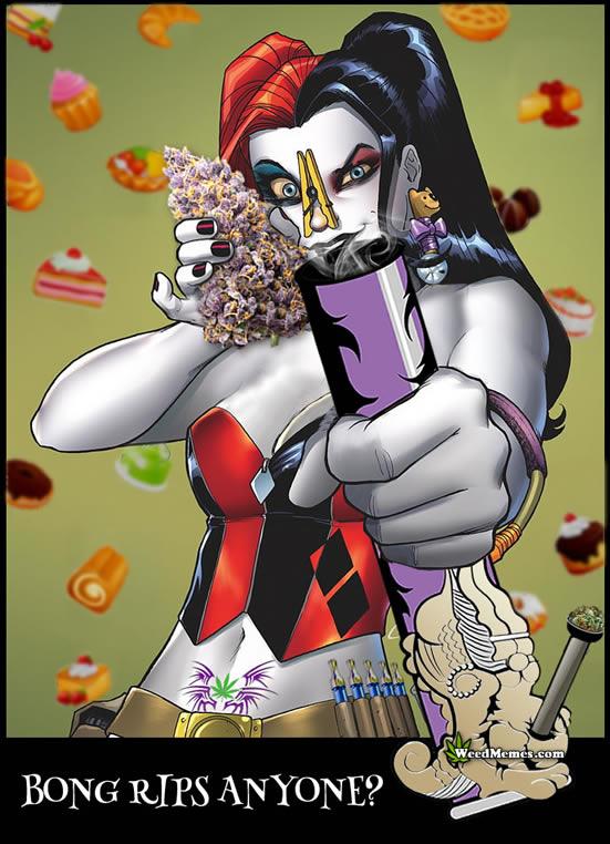Harley Quinn Bong Rips Memes