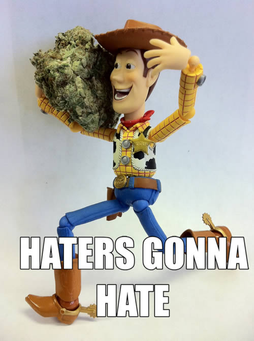 haters gonna hate toy story weedmemes toy story weed memes woody haters gonna hate meme