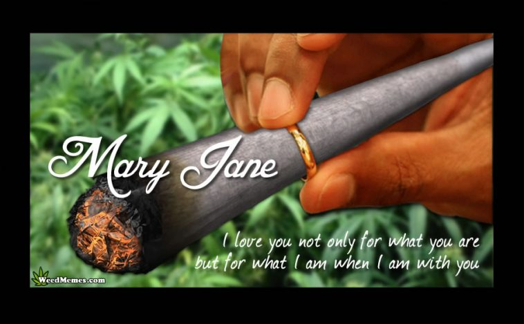 mary jane the devil weed Weed firecrackers recipes weed firecrackers,  original weed recipes newsletter  hail mary jane head haze smoking with style.