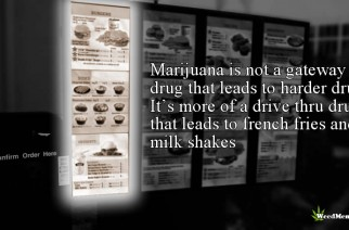 Marijuana Drive Thru Drug Not Gateway Drug Weed Memes