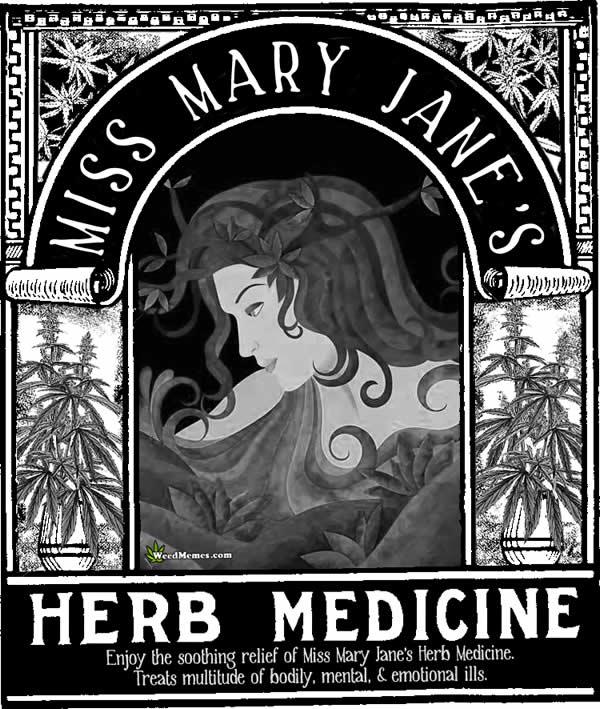 Miss Mary Jane's Herb Medicine MMJ Poster – Weed Memes
