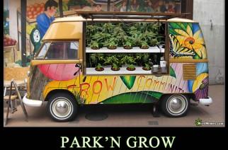 Park'N Grow Marijuana Pics – Weed Memes