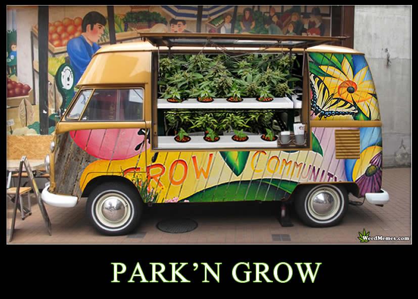 Vw Bus 2015 >> Park'N Grow Marijuana Pics - Weed Memes