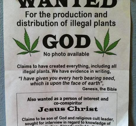 wanted god weed memes 459x426 jesus for cannabis memes weed memes