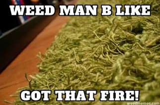 Weed Man B Like Got That Fire Weed Memes