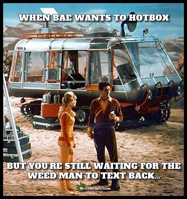 bae hotbox weedman text back weedmemes bae wants to hotbox waiting for weed man text weed meme