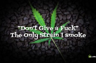 """Don't Give A Fuck"" Only Strain I Smoke Weed Memes"