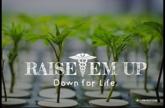 Raise'em Up Down For Life Grow Cannabis Weed Memes