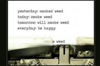 Smoke Weed Everyday Weedmemes