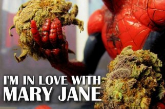Spiderman Love Mary Jane