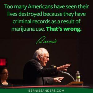 Bernie Sanders Marijuana Quote Criminal Records