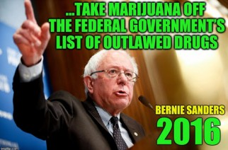 Best Bernie Sanders Quotes About Marijuana Legalization