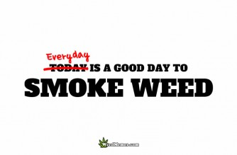 Everyday Is A Good Day To Smoke Weed Memes