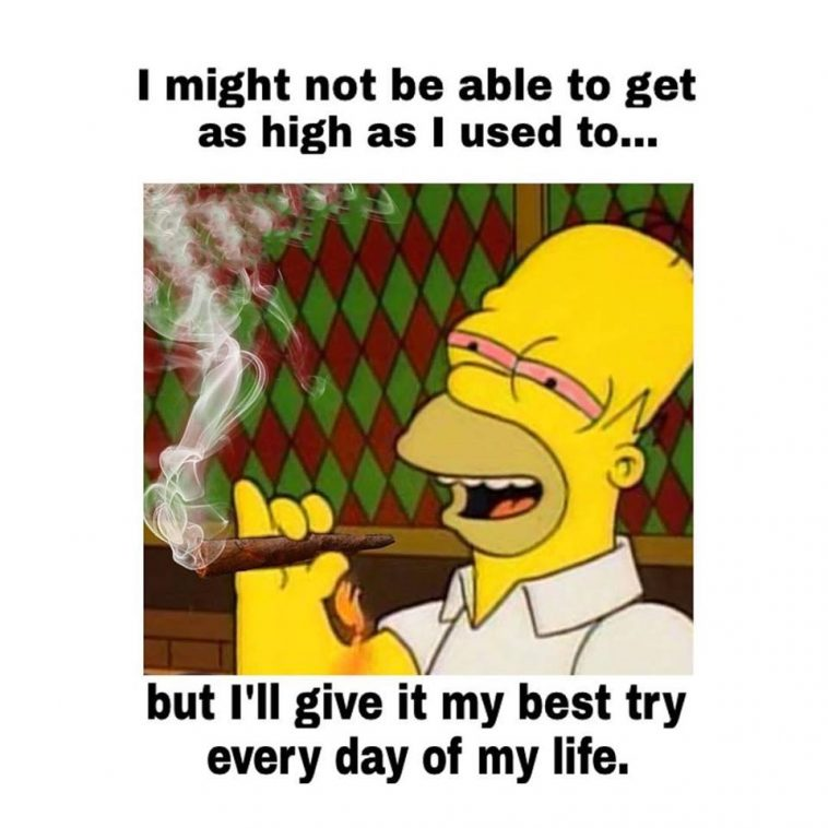 homer simpson high life weedmemes 758x758 homer simpson funny weed memes get high everyday