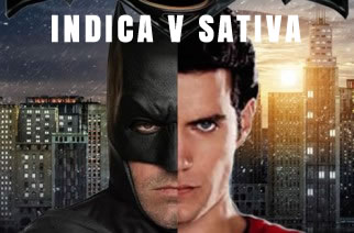 Indica Sativa Batman Superman Weedmemes