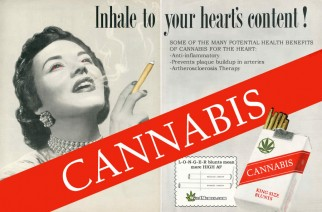 Inhale Cannabis To Your Heart's Content MMJ Weed Memes