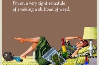 Smoke a Shitload of Weed Funny Marijuana Memes