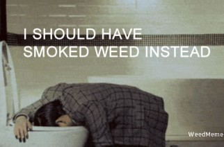 Don't Drink & Puke, Smoke Weed Instead Marijuana Memes