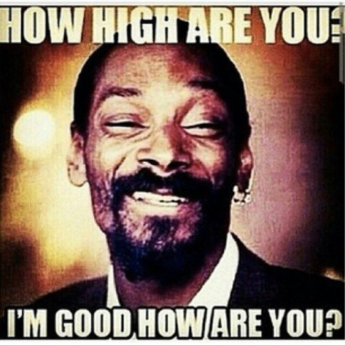Snoop Dogg How High Are You Funny Stoner Weed Memes Weed Memes