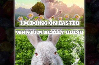 Stoned Easter Bunny Happy Easter Weed Memes