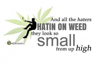 Weed Haters Look So Small Stay High Weed Memes