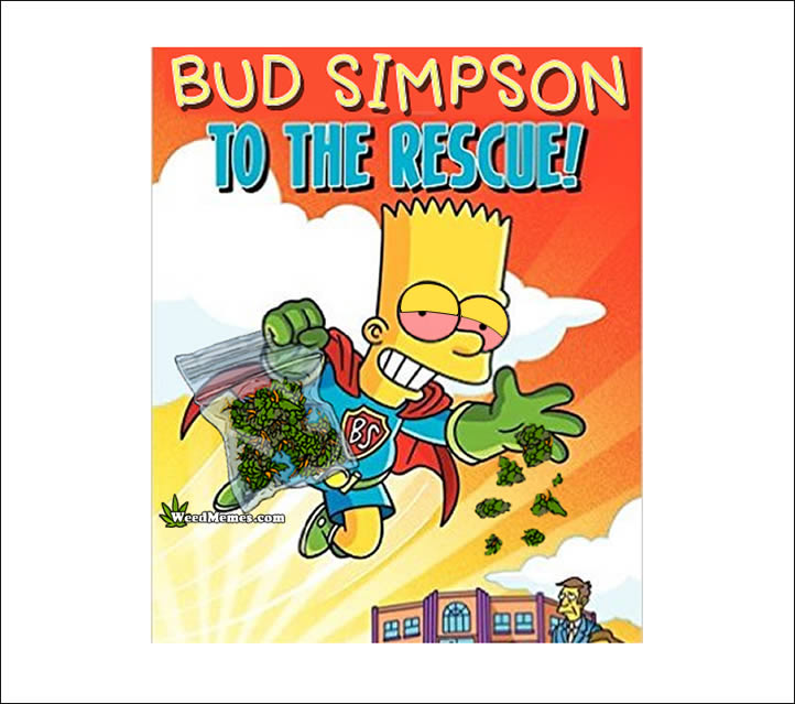 Stoner Bud Simpson Weed Memes To The Rescue Dropping Weed