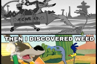 Wiley Coyote Roadrunner Stoner Cartoon Alcohol vs Weed Memes