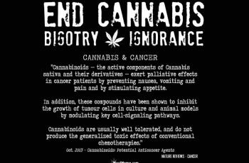 End Cannabis Bigotry Ignorance Quotes
