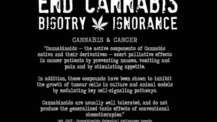 marijuana cancer and bodily functions The effects of cannabis are caused on the human body different plants of the genus cannabis contain different to connect cannabis with lung cancer.