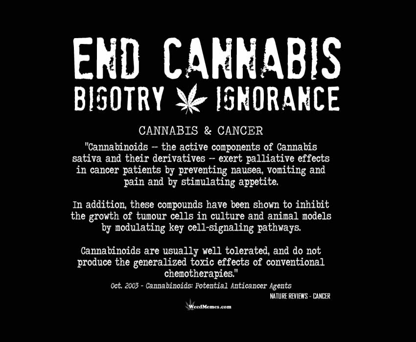End Cannabis Bigotry & Ignorance Cannabis & Cancer Facts