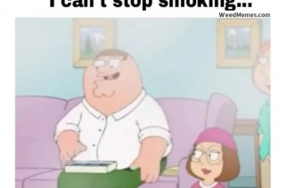 Family Guy Love Weed Memes