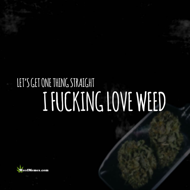 One Thing Straight I F**king Love Weed Stoner Quotes