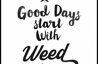 Good Days Start With Weed Smoke Marijuana Quotes