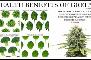 Health Benefits of Greens Cannabis Is a Plant Legalize Weed Memes
