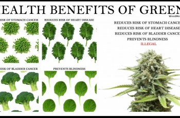 Health Benefits Greens Weed Memes
