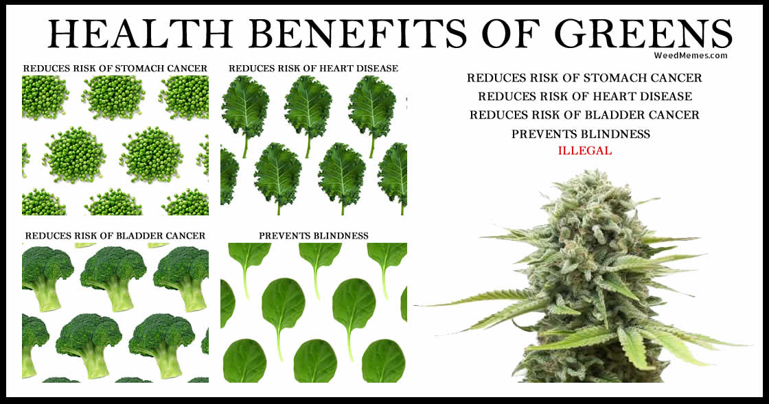 [Image: health-benefits-greens-weed-memes.jpg]