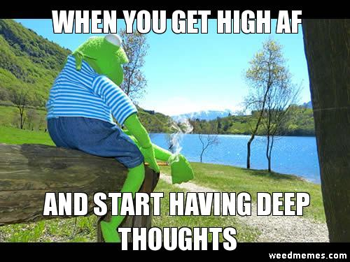 High AF Memes Kermit The Frog High AF Deep Thoughts Weed Memes