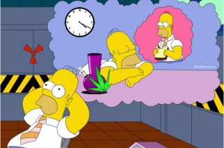 Homer Simpson 420 Weed Daydream Cartoon Stoner Memes