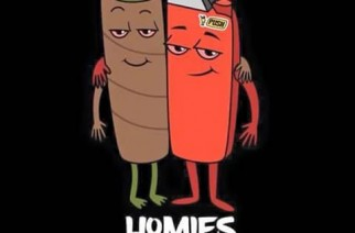 Blunt & Lighter Homies for Life Funny Marijuana Drawing Weed Memes