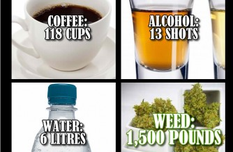 Marijuana 'Lethal Dose' Comparison Infographic Safer Than Water Weed Memes