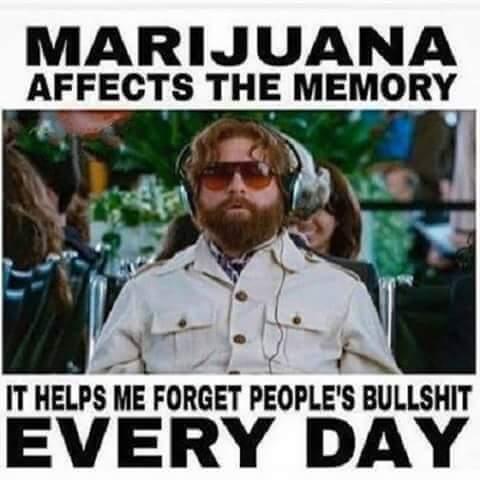 Marijuana Memory Helps Forget BS Funny Weed Memes